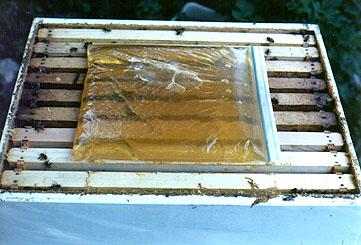 ZipLock bag filled with honey.