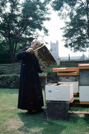 Brother Adam in his home apiary at Buckfast Abbey in 1983 showing the nice performance of one of his Greek combinations. Photo: Erik Osterlund