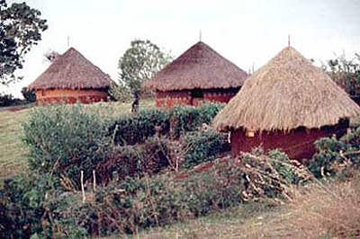 In the western part where we went first, traditional huts were still widely used for living.