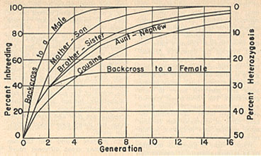 Figure 1. Percentages of inbreeding and of heterozygosis (assuming the initial value to be 50 per cent) in successive generations of various systems of inbreeding in honey bees. (From Crow and Roberts, 1950.)