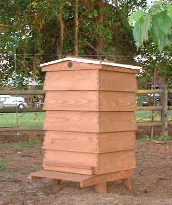 10 Frame Wbc Hive Steve Moye Beesource Beekeeping