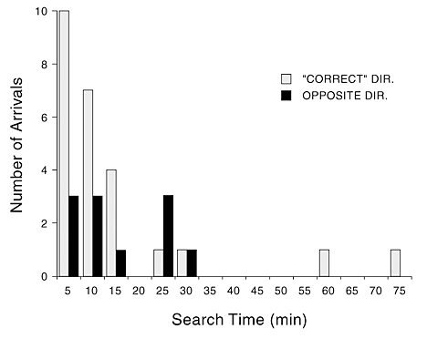 Figure 2. In experiments run by Gould et al. (1970:table 4), a third of the recruited bees ended up at a station in a direction opposite to that supposedly indicated by the waggle dance maneuver. Moreover, most search times differed little for bees that ended up at either of the two stations. The outgoing flight times for experienced bees would have been less than 20 seconds in the experiments they conducted (Wenner, 1963).
