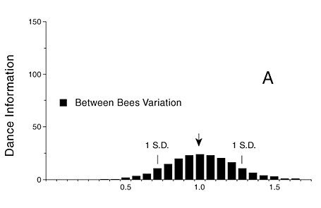 Figure 3. A) The straight run times in waggle dances (e.g., Wenner, 1962) permit one to derive an expected level of performance for potential recruit bees, if they could use distance information they supposedly obtain from forager dances (see text for source of values).