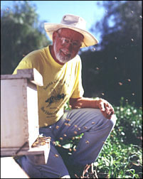 Dr. Adrian Wenner with a beehive