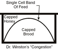 "Dr. Winston's ""Congestion"" Diagram"