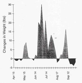 FIGURE 1.  MICHIGAN SCALE HIVE DATA, CIRCA 1954