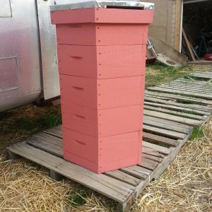Finished Hex Hive.